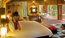 Jacis' Tree Lodge Accommodation Image