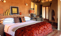 Madikwe Safari Lodge Accommodation Image